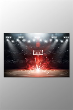 Basketbol Potası Kanvas Tablo